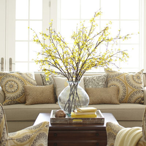 Yellow Forsythia Branch from Pier 1